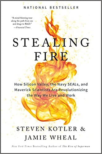 Book Review Stealing Fire